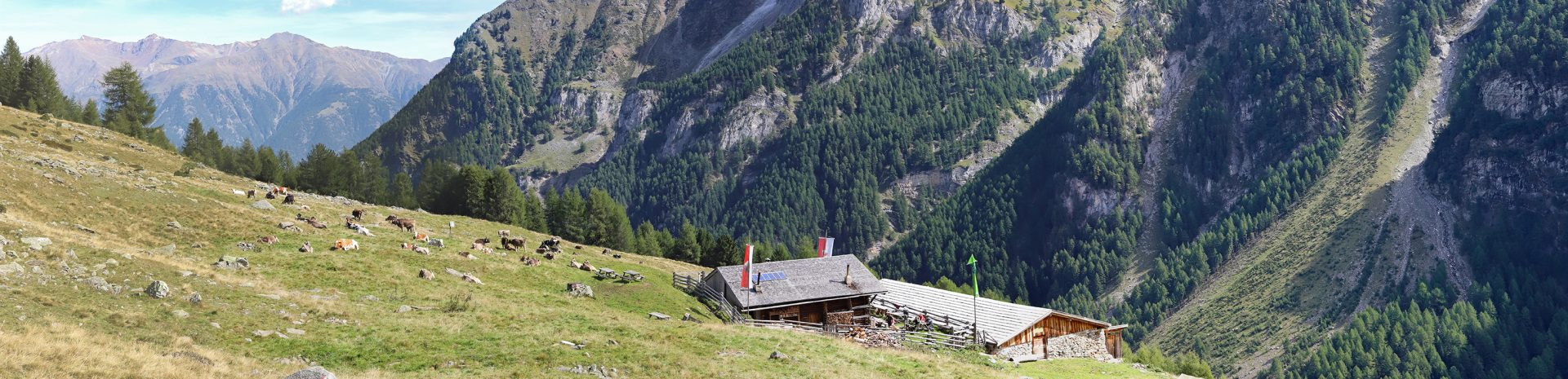 Obere Alm – Laaser Tal